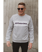 tESTosterONIA GREY SWEATER